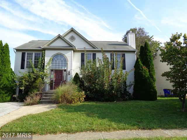 206 Silver Stone Drive, Walkersville, MD 21793 (#FR10078221) :: Ultimate Selling Team