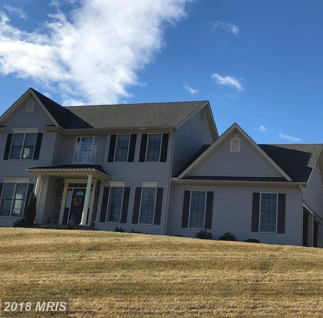 205 Layla Drive, Middletown, MD 21769 (#FR10135426) :: Pearson Smith Realty