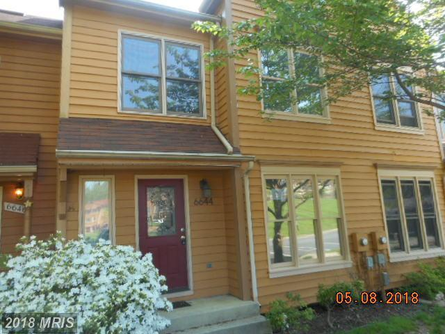 6644 Beach Drive, New Market, MD 21774 (#FR10250084) :: The Maryland Group of Long & Foster