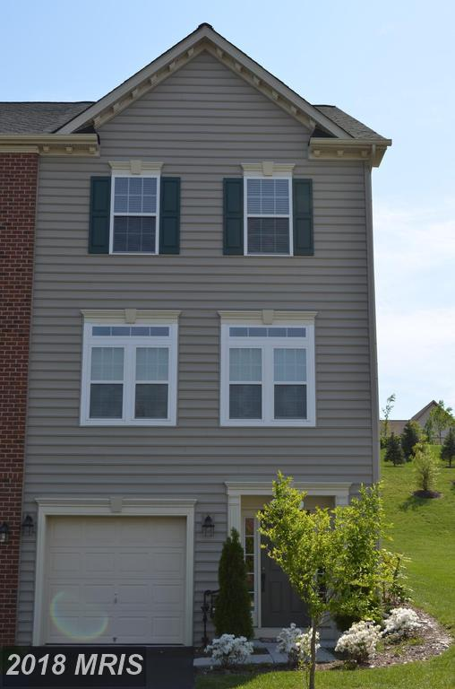 9733 Braidwood Terrace, Frederick, MD 21704 (#FR10299356) :: ReMax Plus