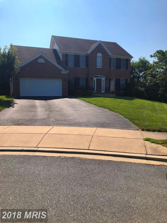 215 Rod Circle, Middletown, MD 21769 (#FR10343864) :: Advance Realty Bel Air, Inc