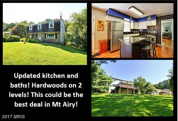 4217 Bill Moxley Road, Mount Airy, MD 21771 (#FR9920134) :: LoCoMusings