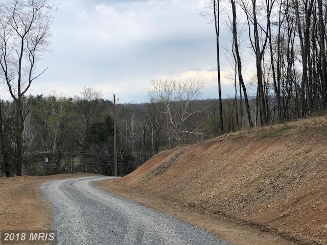 Buck Valley Road, Warfordsburg, PA 17267 (#FU10224669) :: Keller Williams Pat Hiban Real Estate Group