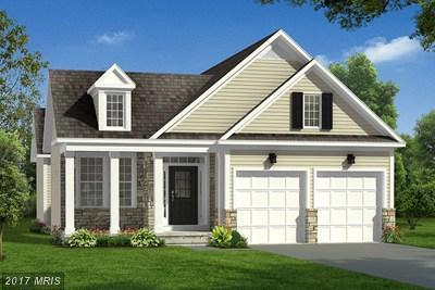 Buttercup Dr, White Post, VA 22663 (#FV10031661) :: Pearson Smith Realty