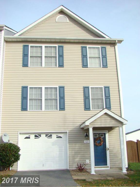 123 Lighthouse Lane, Winchester, VA 22602 (#FV10104542) :: Pearson Smith Realty