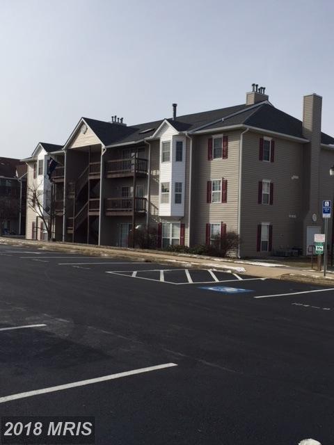 104 Timberlake Terrace SE #8, Stephens City, VA 22655 (#FV10132807) :: Pearson Smith Realty