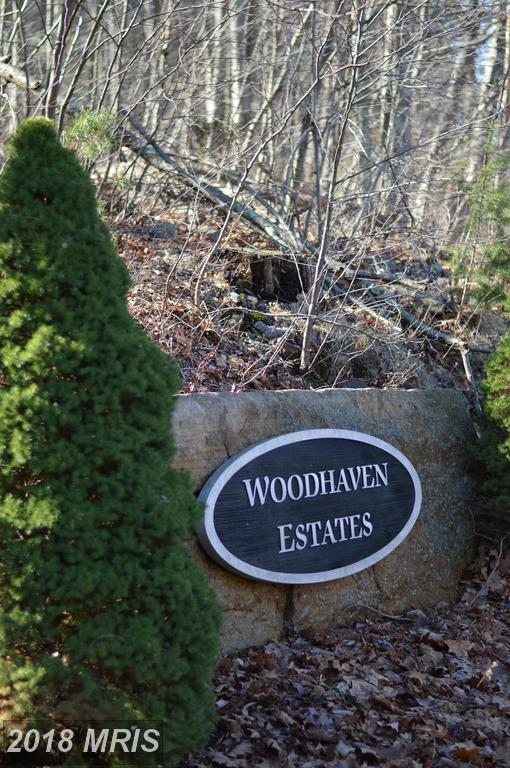 Lot 3 Wardensville Pike, Star Tannery, VA 22654 (#FV10164816) :: Keller Williams Pat Hiban Real Estate Group