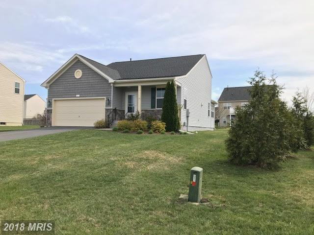 439 Talamore Drive, Stephens City, VA 22655 (#FV10217955) :: RE/MAX Gateway