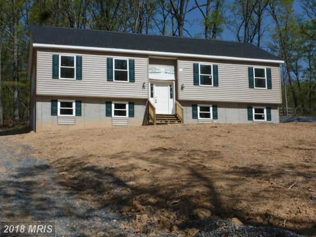 228 Falcon Trail, Winchester, VA 22602 (#FV10257509) :: The Gus Anthony Team