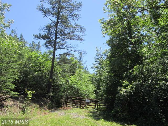 13-LOT Siler Road, Winchester, VA 22603 (#FV10268411) :: Bob Lucido Team of Keller Williams Integrity