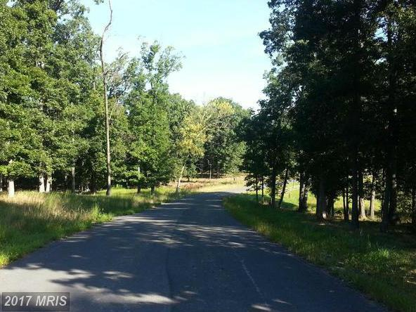 LOT 28 Comforter Lane, Clear Brook, VA 22624 (#FV9846514) :: LoCoMusings