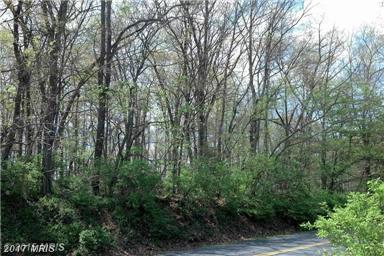 Jordan Springs Road, Stephenson, VA 22656 (#FV9883869) :: LoCoMusings
