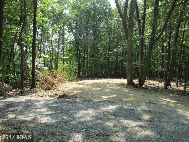 Raccoon Divide, Winchester, VA 22602 (#FV9910678) :: LoCoMusings