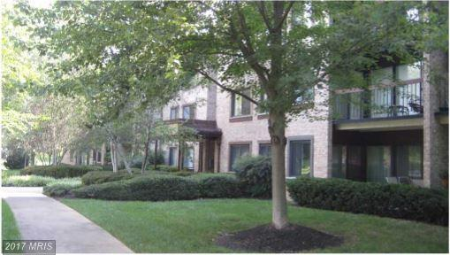 3031 Borge Street #202, Oakton, VA 22124 (#FX10024869) :: Browning Homes Group