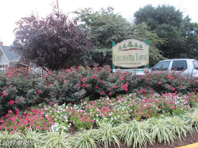 7981 Audubon Avenue D3, Alexandria, VA 22306 (#FX10043615) :: LoCoMusings