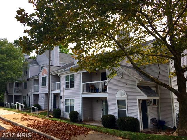 13587 Orchard Drive #3587, Clifton, VA 20124 (#FX10084462) :: RE/MAX Executives