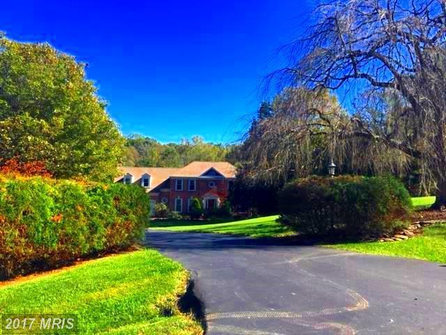 10676 Oakton Ridge Court, Oakton, VA 22124 (#FX10087531) :: Browning Homes Group