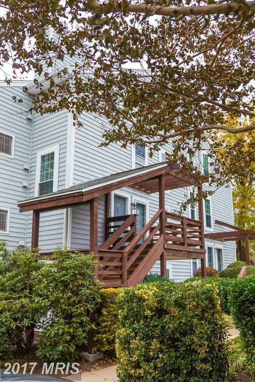 10002 Oakton Terrace Road #10002, Oakton, VA 22124 (#FX10108354) :: Labrador Real Estate Team