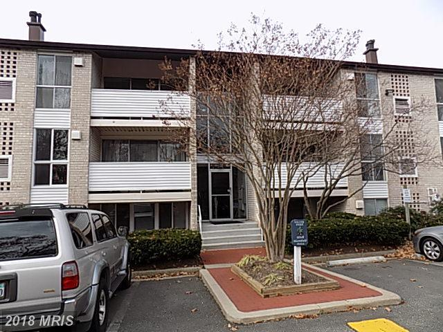 5608 Bloomfield Drive #204, Alexandria, VA 22312 (#FX10127919) :: The Putnam Group