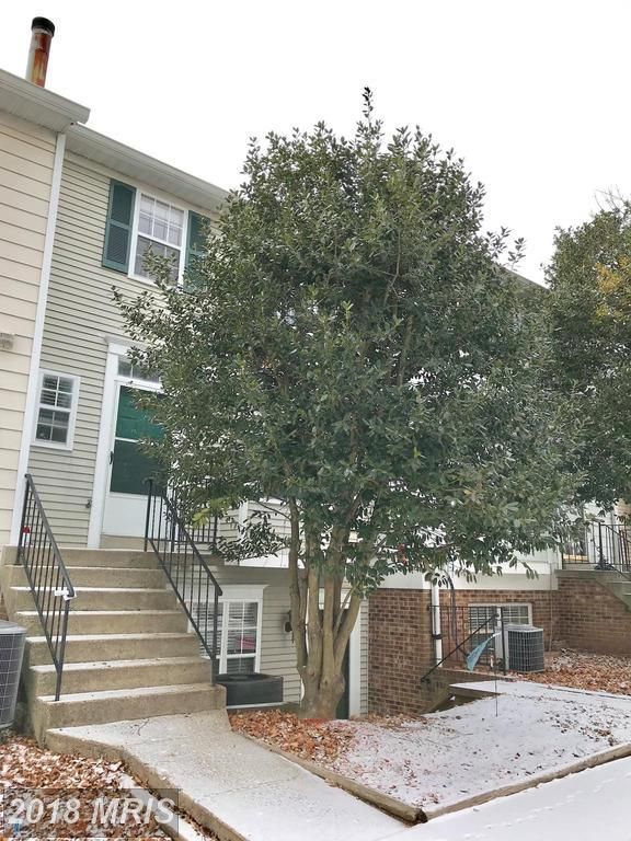 4150 Placid Lake Court 58G, Chantilly, VA 20151 (#FX10137723) :: The Hagarty Real Estate Team