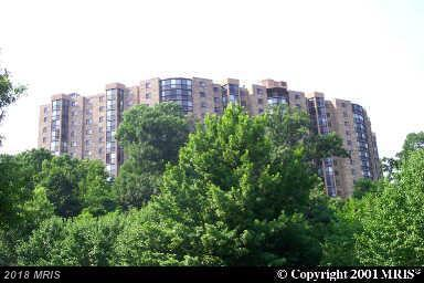 5902 Mount Eagle Drive #310, Alexandria, VA 22303 (#FX10183689) :: Colgan Real Estate