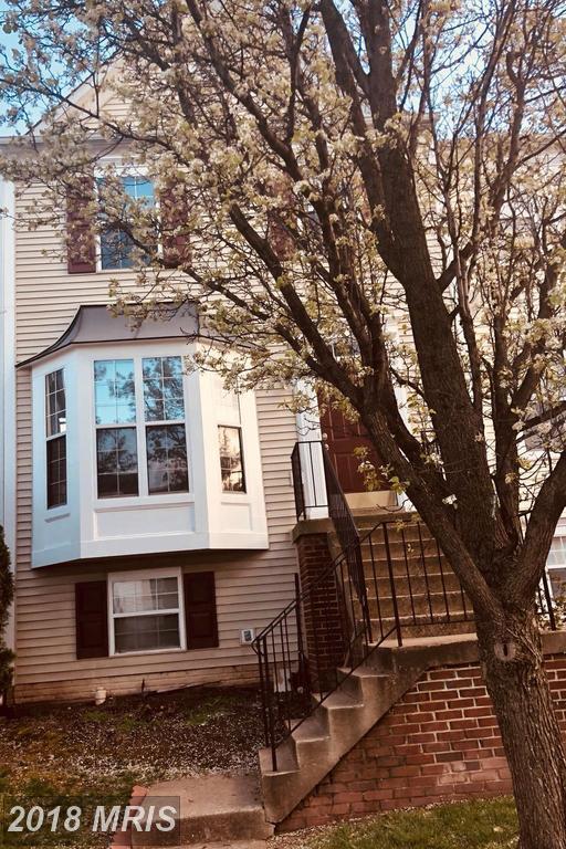 13137 Quail Creek Lane, Fairfax, VA 22033 (#FX10216160) :: Browning Homes Group