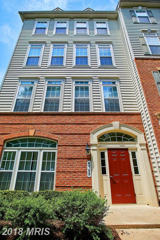 5709 Callcott Way K, Alexandria, VA 22312 (#FX10235448) :: The Greg Wells Team