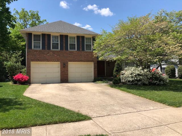 7628 Gralnick Place, Springfield, VA 22153 (#FX10235635) :: Jim Bass Group of Real Estate Teams, LLC