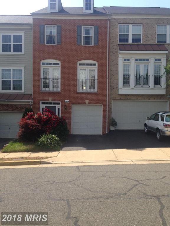 7834 Locust Leaf Lane, Alexandria, VA 22315 (#FX10242743) :: The Bob & Ronna Group