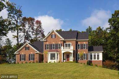 Henderson Road, Clifton, VA 20124 (#FX10246527) :: Browning Homes Group