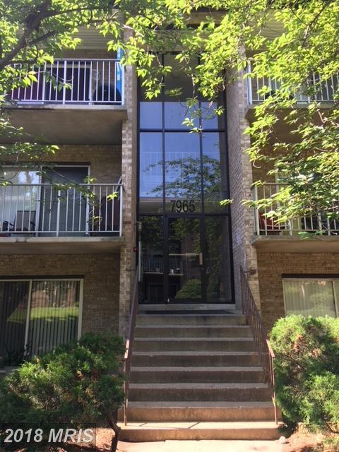 7965 Audubon Avenue D2, Alexandria, VA 22306 (#FX10250776) :: Zadareky Group/Keller Williams Realty Metro Center