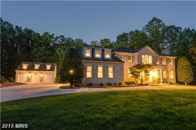 11020 Briarlynn Court, Fairfax Station, VA 22039 (#FX10259383) :: Browning Homes Group