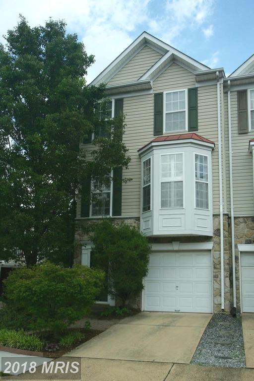 6971 Earlston Drive, Alexandria, VA 22315 (#FX10261150) :: Browning Homes Group