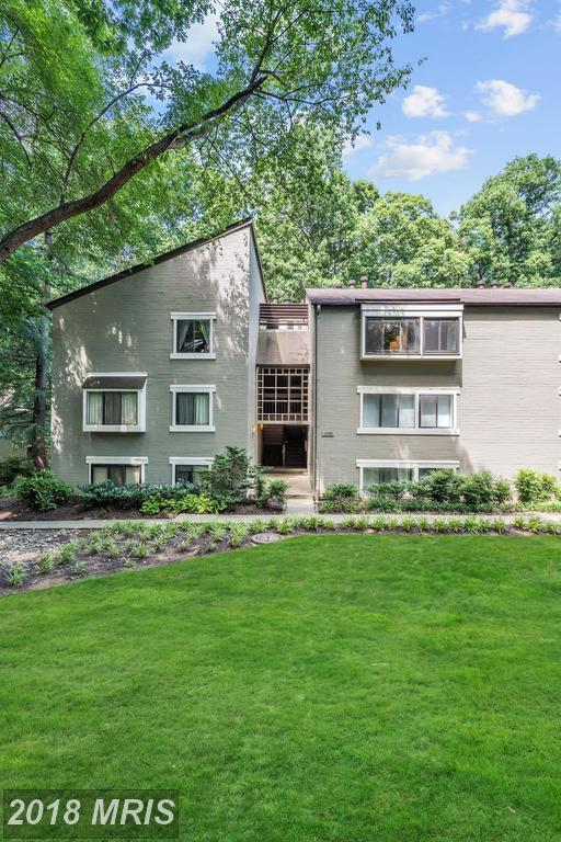 11745 Ledura Court #202, Reston, VA 20191 (#FX10286958) :: Keller Williams Pat Hiban Real Estate Group
