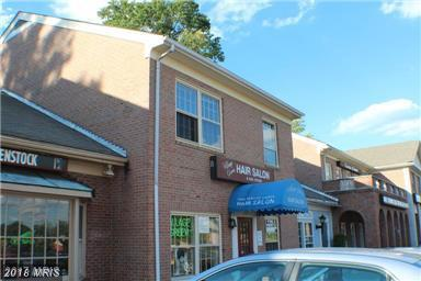 517 Maple Avenue W, Vienna, VA 22180 (#FX10294917) :: RE/MAX Executives