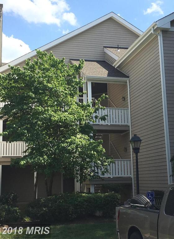 14313 Climbing Rose Way #304, Centreville, VA 20121 (#FX10295646) :: Keller Williams Pat Hiban Real Estate Group