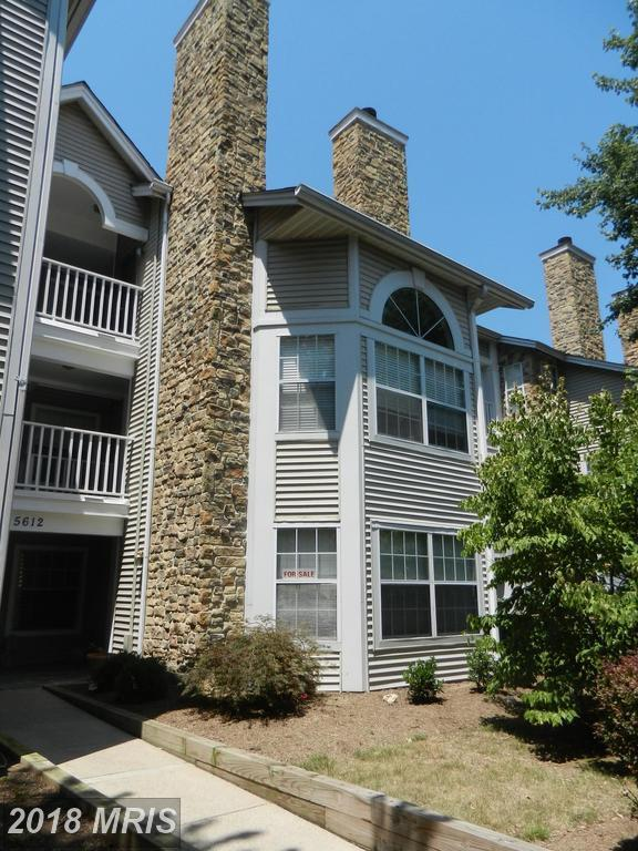 5612 Willoughby Newton Drive #16, Centreville, VA 20120 (#FX10297574) :: SURE Sales Group