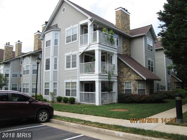 5605 Willoughby Newton Drive #13, Centreville, VA 20120 (#FX10300694) :: Provident Real Estate
