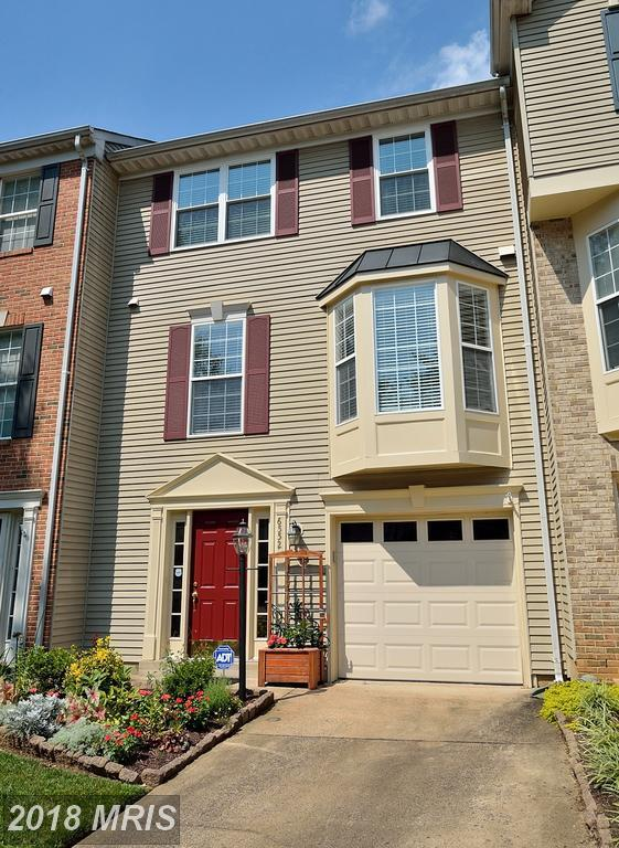 6552 Kelsey Point Circle, Alexandria, VA 22315 (#FX10318750) :: SURE Sales Group