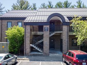 4600 Pinecrest Office Park Drive E, F, Alexandria, VA 22312 (#FX10321264) :: Wilson Realty Group