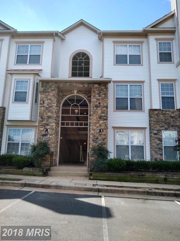 5909 Founders Hill Drive #203, Alexandria, VA 22310 (#FX10322233) :: Bob Lucido Team of Keller Williams Integrity