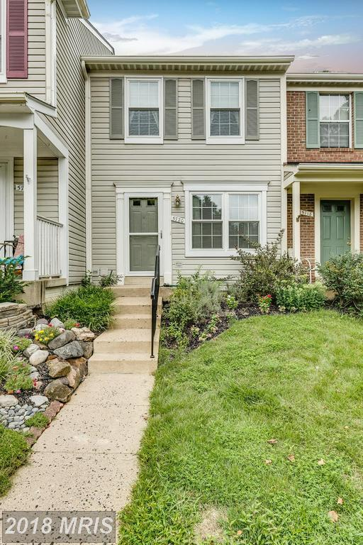 5720 Harrier Drive, Clifton, VA 20124 (#FX10323639) :: Browning Homes Group