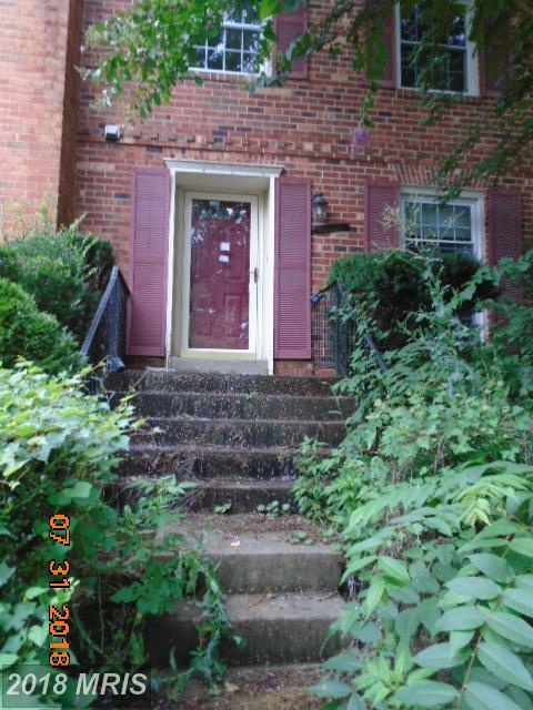 9956 Wood Wren Court, Fairfax, VA 22032 (#FX10324230) :: Bruce & Tanya and Associates