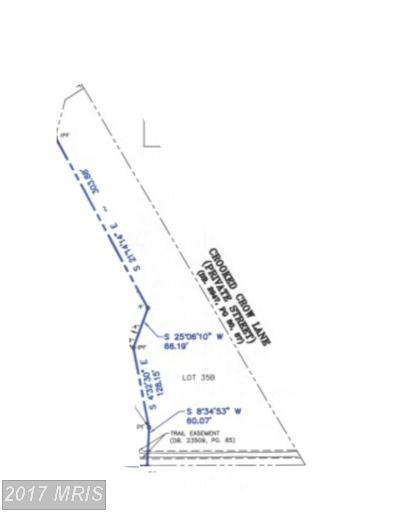 10317 Georgetown Pike, Great Falls, VA 22066 (#FX9899589) :: LoCoMusings