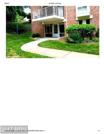 2521 Huntington Avenue #26, Alexandria, VA 22303 (#FX9972897) :: LoCoMusings