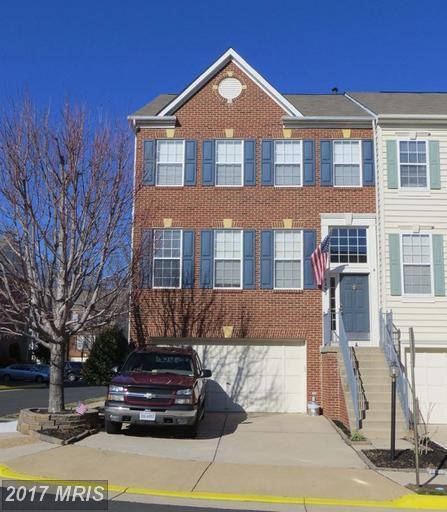 5292 Sandyford Street, Alexandria, VA 22315 (#FX9982015) :: Browning Homes Group