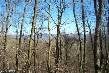Orchard Lane, Moorefield, WV 26836 (#HD10038917) :: Pearson Smith Realty