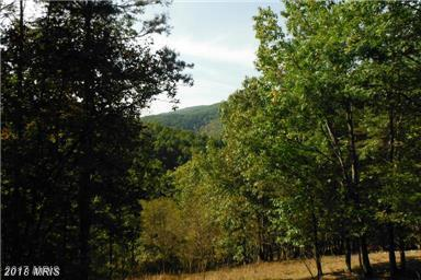 Nathaniel Mountain Road, Moorefield, WV 26836 (#HD10127748) :: Pearson Smith Realty
