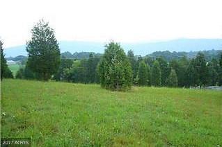 Monument Drive, Slanesville, WV 25444 (#HS10038148) :: LoCoMusings