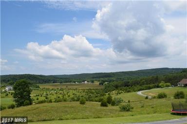 13 PASO FINO Drive, Augusta, WV 26704 (#HS10064934) :: Pearson Smith Realty